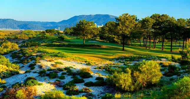 Troia golfbane