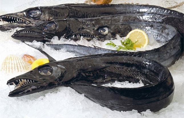 Espada fisk