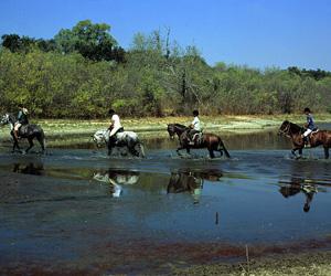 Hesteridning i Alter do Chao
