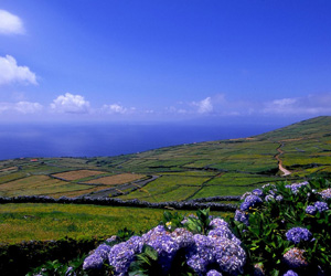 Corvo Island, Azorerne